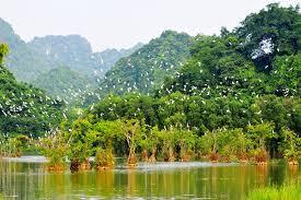 thuê xe Sài Gòn cà Mau